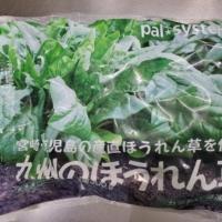 九州のほうれん草(カット・バラ連結)