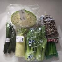 コトコトやりくり野菜セット