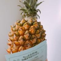 ちょっと小ぶりな沖縄手ちぎりパイン 税込980円