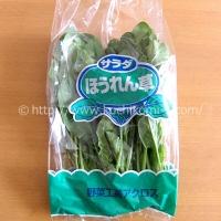サラダほうれん草 一束 (103円)