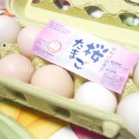 さくら卵 10個 (410円)