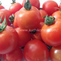 ミニトマト 250g(300円)
